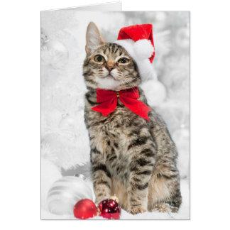 Christmas Cat At Red Santa's Hat Near Christmas Greeting Card