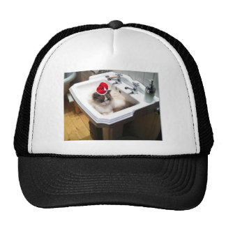 Christmas Cat Cap