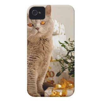 Christmas Cat Case-Mate iPhone 4 Cases
