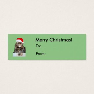 Christmas Cat Humbug Photo with Santa Hat Mini Business Card