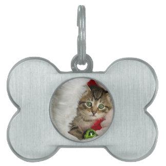 Christmas cat -kitten cat - cute cats pet name tag