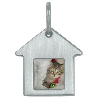 Christmas cat -kitten cat - cute cats pet tag