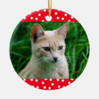Christmas cat ornament - customise!