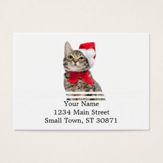 Christmas cat - santa claus cat - cute kitten business card