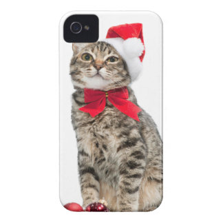 Christmas cat - santa claus cat - cute kitten iPhone 4 cover