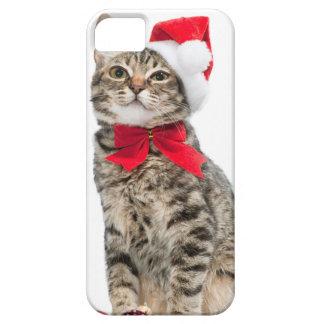 Christmas cat - santa claus cat - cute kitten iPhone 5 case