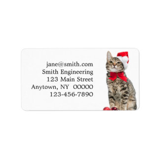 Christmas cat - santa claus cat - cute kitten label