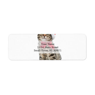 Christmas cat - santa claus cat - cute kitten return address label