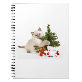 Christmas cat spiral note books