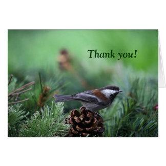 Christmas chickadee thank you card