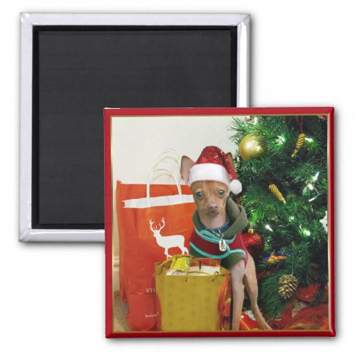 Christmas chihuahua dog fridge magnet