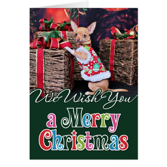Christmas - Chihuahua - Matty Card