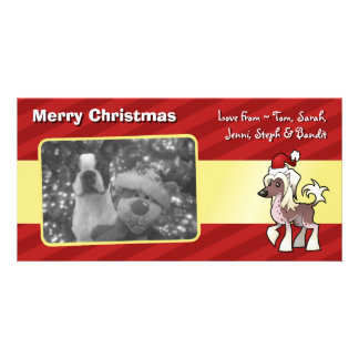 Christmas Chinese Crested (hairless) Customized Photo Card