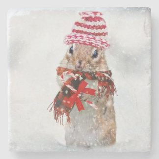 Christmas chipmunk stone coaster