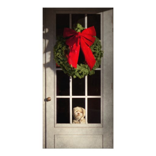 Christmas - Clinton, NJ - Christmas puppy Picture Card