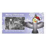 Christmas Cockatiel Custom Photo Card