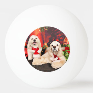 Christmas - Cocker - Toby, Havanese - Little T Ping Pong Ball