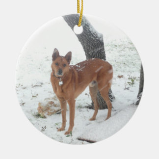 Christmas Collection In Memory of Champ Ceramic Ornament