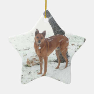 Christmas Collection Pet or Family Photo Ceramic Star Decoration