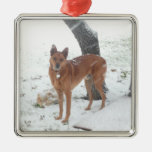 Christmas Collection Pet or Family Photo Silver-Colored Square Decoration