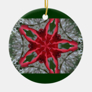Christmas Color Star Ornament