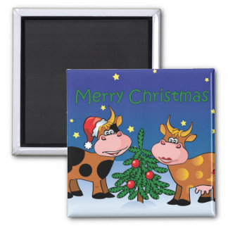 Christmas Cows Square Magnet