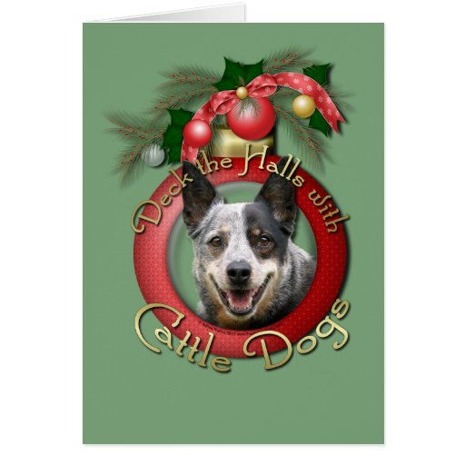Christmas - Deck the Halls - Cattle Dogs Greeting Cards