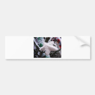 Christmas Decorations Star Frosted Bumper Sticker