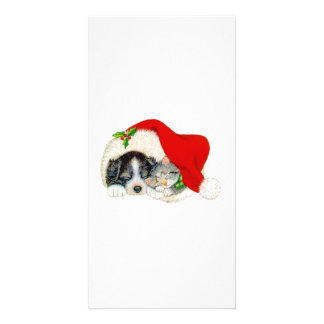 Christmas Dog and Cat Photo Card Template