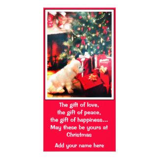 Christmas Dog Card Photo Card
