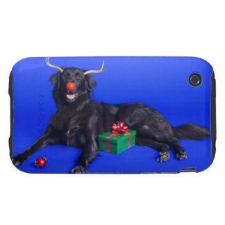 Christmas dog iPhone 3 tough covers