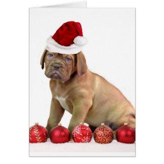 Christmas Dogue de Bordeaux puppy Greeting Card