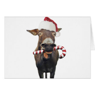 Christmas donkey - santa donkey - donkey santa card