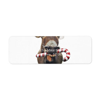 Christmas donkey - santa donkey - donkey santa return address label