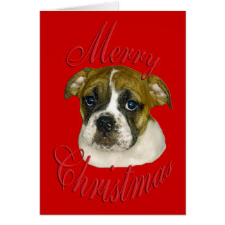 Christmas English Bulldog Card