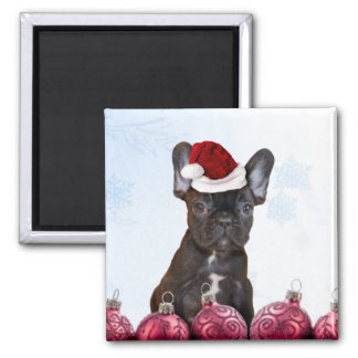 Christmas French Bulldog Square Magnet