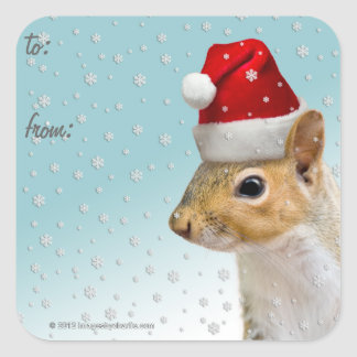 Christmas Gift Tag Stickers Lge/Sm Santa Squirrel