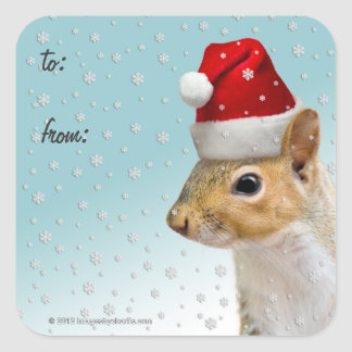 Christmas Gift Tag Stickers Santa Squirrel Lge/Sm