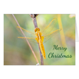Christmas Gold and Yellow Colored Dragonfly Card
