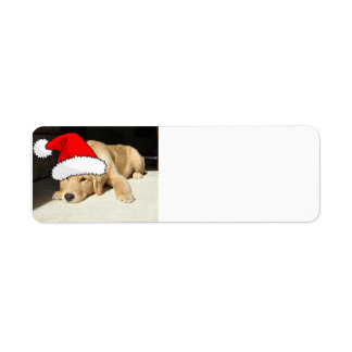 Christmas Golden Retriever Pup Return Address Label