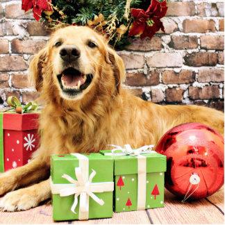 Christmas - Golden Retriever - Rocky Photo Cut Out