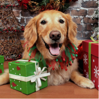 Christmas - Golden Retriever - Sidney Photo Cut Outs