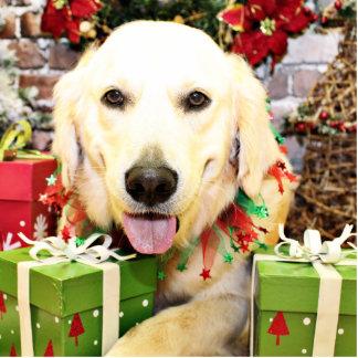 Christmas - Golden Retriever - Teagarden Portraits Photo Cut Out