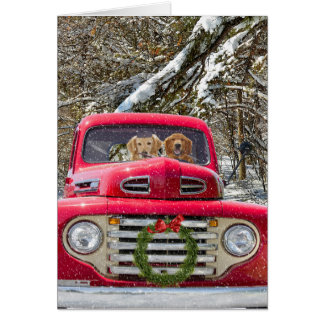 Christmas Golden Retrievers in old truck Card