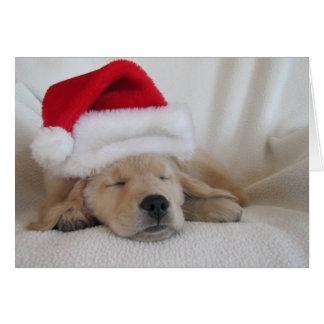 Christmas,  Golden Retriver Puppy Sleeping Greeting Card