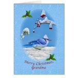 Christmas, Grandma, Blue Bird and Snow Cards