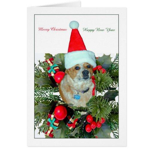 Christmas Greeting Card - Humorous