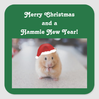 Christmas Hamster Square Sticker
