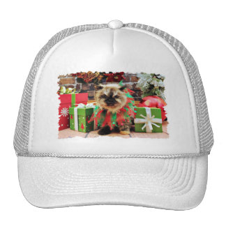 Christmas - Himalayan Cat - Pansy Trucker Hat