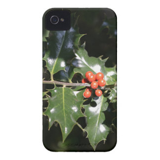 Christmas Holly Berries Case-Mate iPhone 4 Case